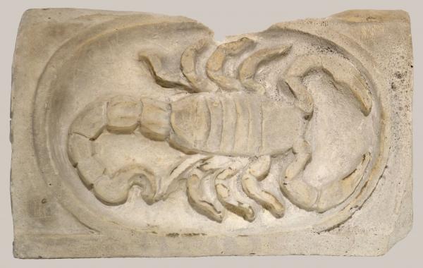 2018/9_Sternzeichen Skorpion
