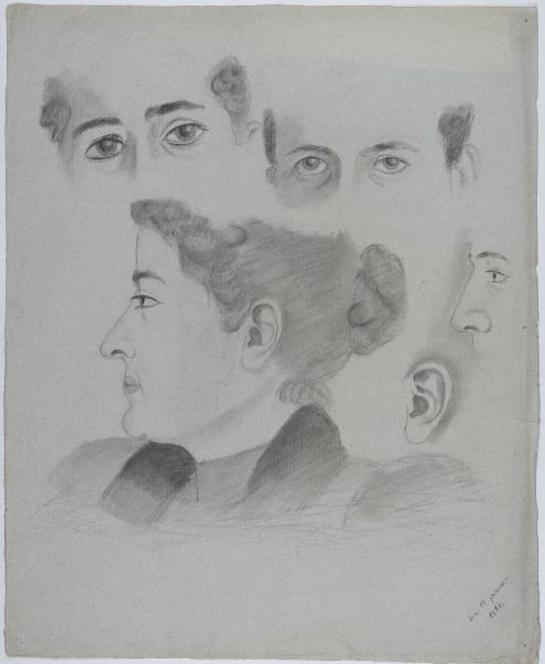 Studie der Gesichtspartien