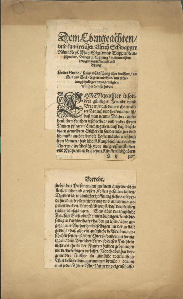 2 Seiten aus