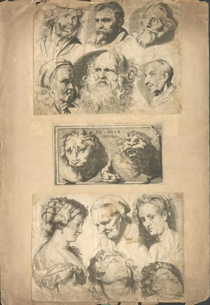 Verschiedene Kopf-Ansichten von Männern, Frauen, Kindern und Löwen